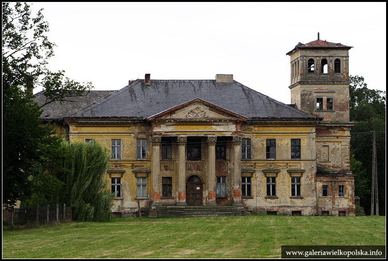 Pałac w Grabie - stan z 2008 roku