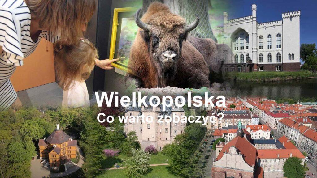 Atrakcje Wielkopolski- co warto zobaczyć?