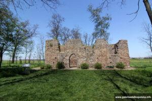 Ruiny kościoła w Gryżynie