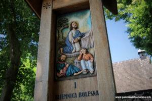 Droga krzyżowa w Wierzenicy